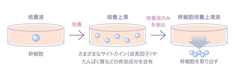 図_幹細胞培養上清液